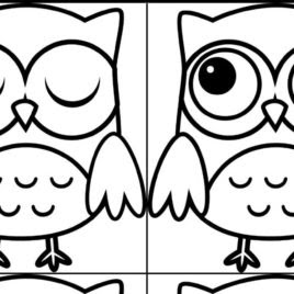 easy owl coloring pages at getcolorings  free printable colorings pages to print and color