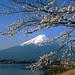 fuji mountain japan