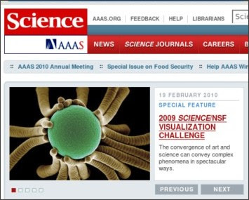 http://www.sciencemag.org/