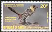 Yellow-breasted Barbet Trachyphonus margaritatus