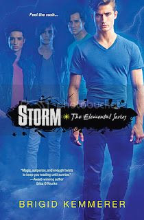Storm by Brigid Kremmerer