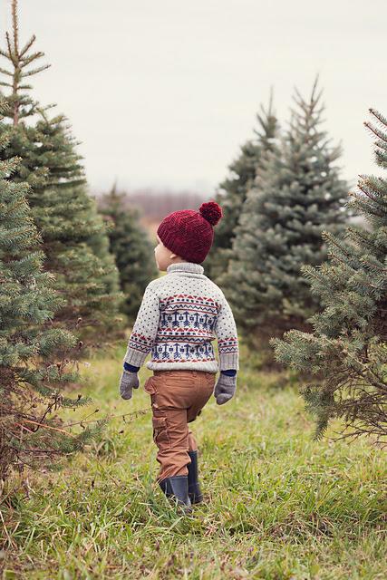 Chandail tricoté Locksley par Emily Ringelman