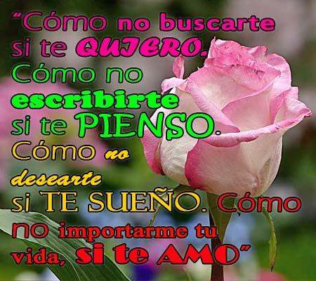 Imagenes De Rosas Con Frases De Amor Para Facebook Rosas De Amor