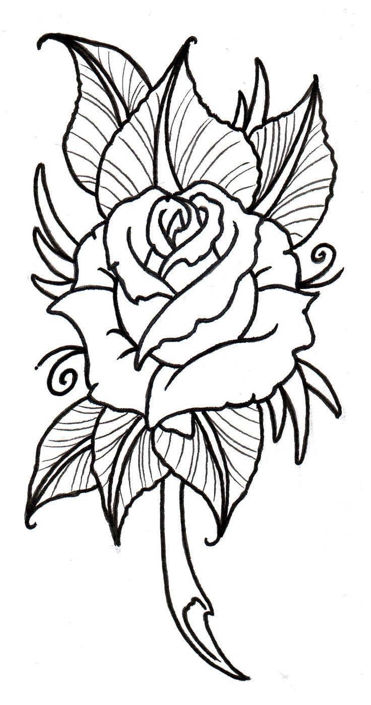 Tattoo Rose Drawing At Getdrawingscom Free For Personal Use