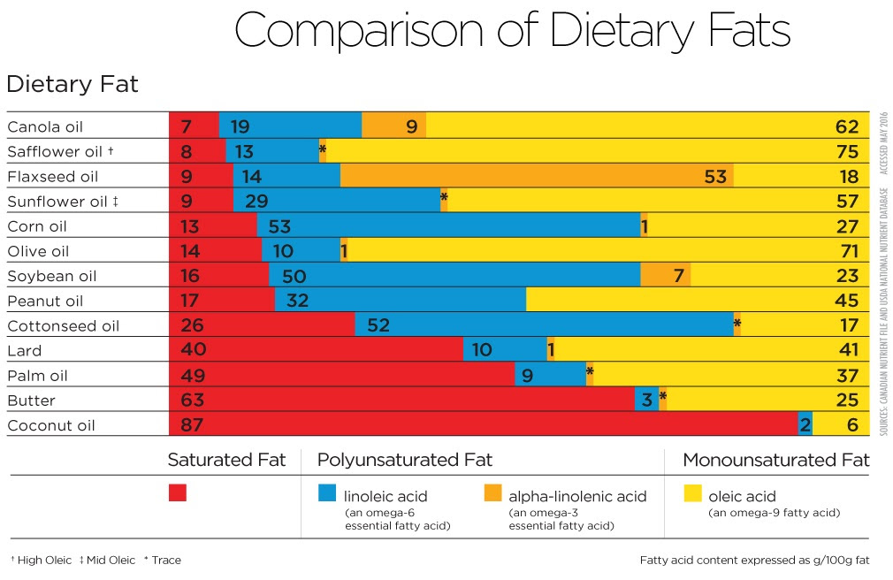 body fat percentage chart printable
