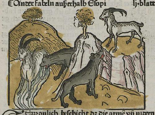 lupus et hircus