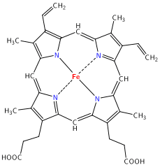 Heme_Porphyrin_Ring