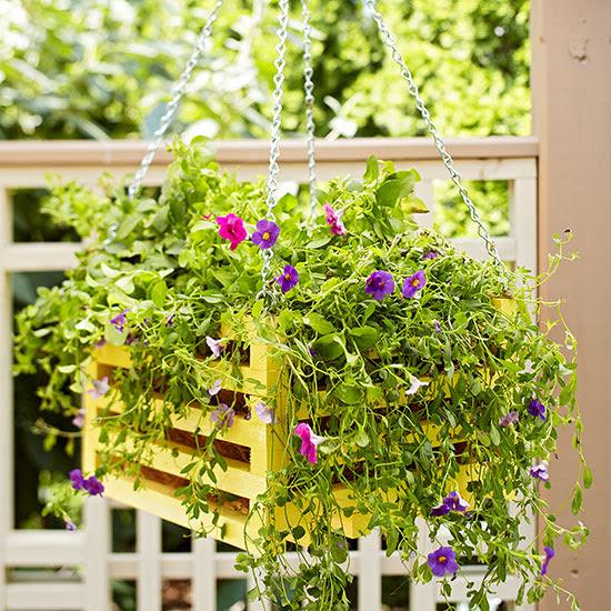 Jardinería práctica: construye tu propia jardinera colgante