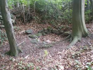Den gamla brunnen till smedjan som låg i dagens Kalvahagen
