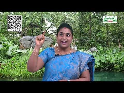 2nd English  Wonders of the Jungle  Term 2  Unit 2  Part 7  EM  Kalvi TV