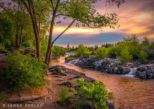 There is Beauty All Around by James Neeley