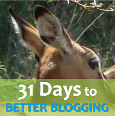 31 Days to Better Blogging