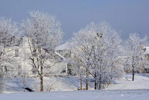 Frozen-Fog-6_edited-1