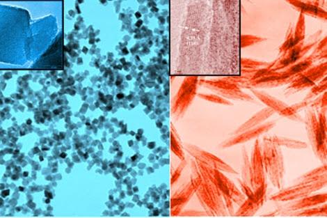 Nanopartículas de óxido de hierro de diversas formas y tamaños|. P. Morales