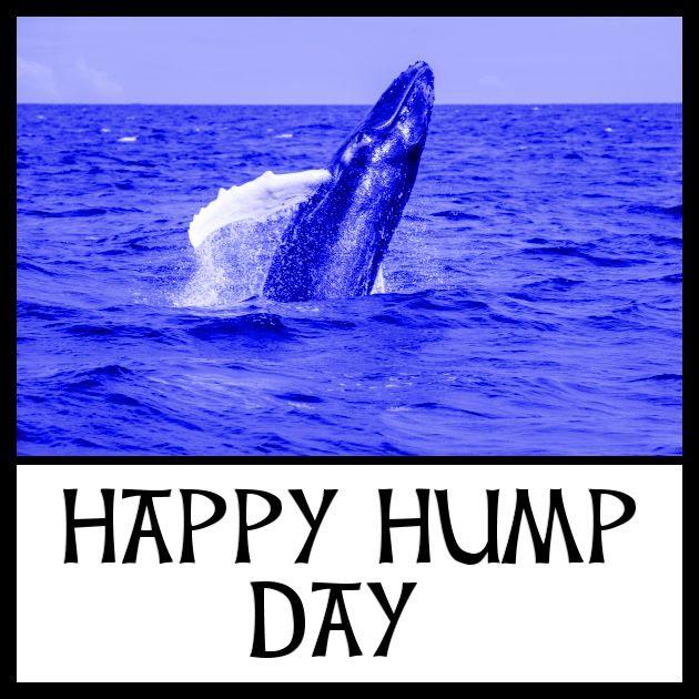 Happy Hump Day! - Yasmine Galenorn