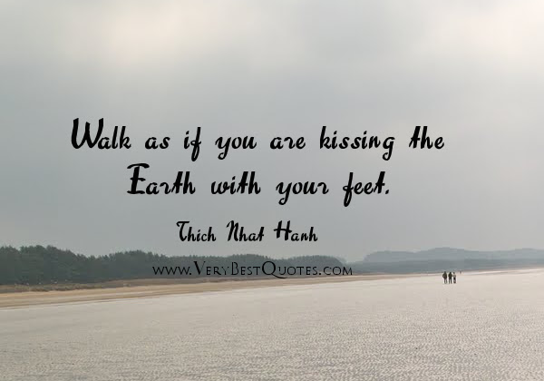 Quotes About All Walks Of Life 59 Quotes