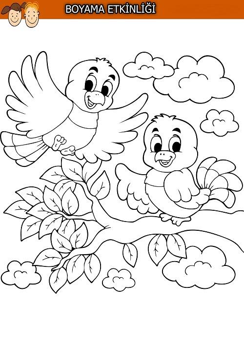 Ağaç Dalındaki Sevimli Kuşlar Boyama Etkinliği Meb Ders