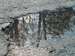Pavement Puddle by Teckelcar