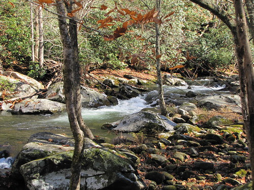IMG_6757_Little_River_Trail