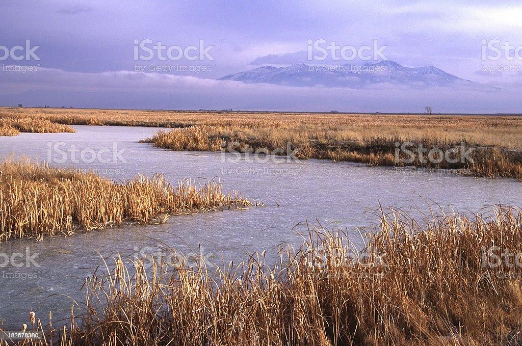 """Résultat de recherche d'images pour """"le rio grande fleuve"""""""