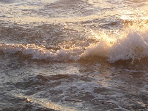 Tide coming in #1