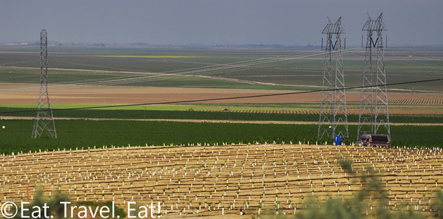 Driving on Interstate 5-Farmland and Communication Towers