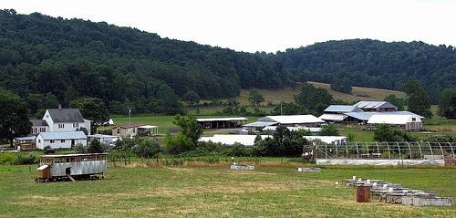 Polyface Farm