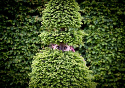 Hide and Seek in the Gardens of Versaill by ChrisGoldNY, on Flickr