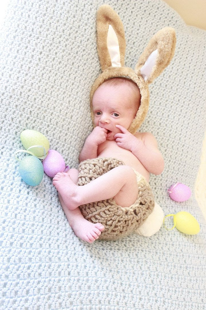 photo bunny2_zps5vyu2utf.jpg