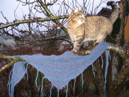 Yndlingssjal med katt
