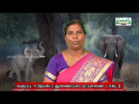 11th Tamil விரிவானம் யானை டாக்டர் இயல் 2 Kalvi TV