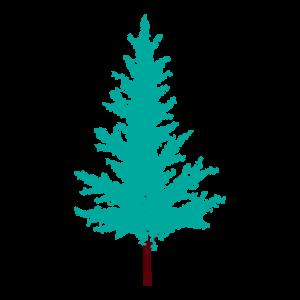 モミの木2 花植物イラスト Flode Illustration フロデイラスト