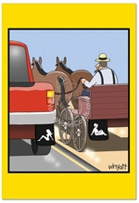 Amish Mudflap Cartoons Birthday Greeting Card Tim Whyatt