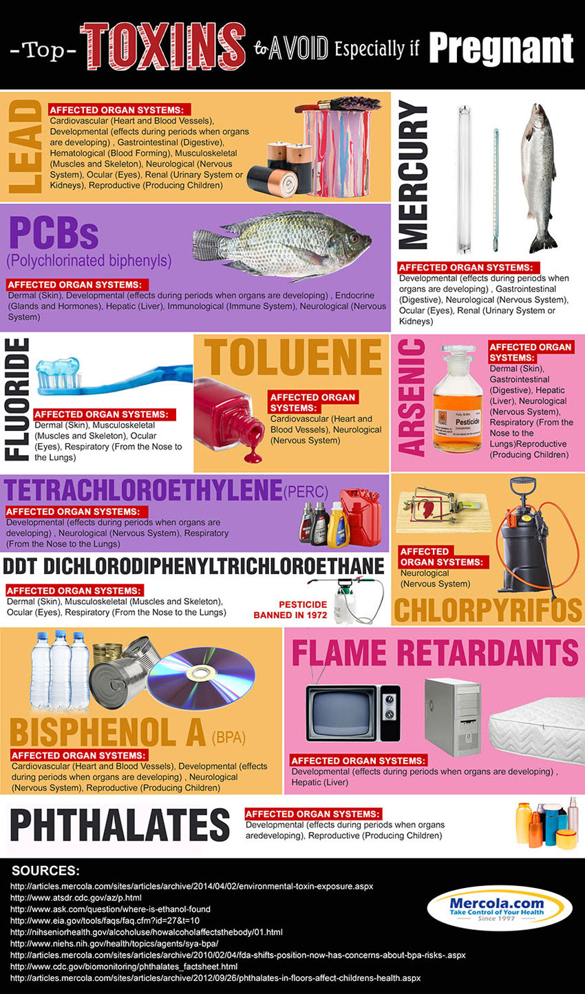 Toxins to Avoid If Pregnant