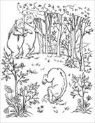 Livres De Coloriage Boucles Dor Et Les Trois Ours Coloriages