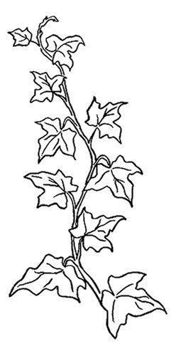 malvorlagen gratis bäume  kostenlose malvorlagen ideen