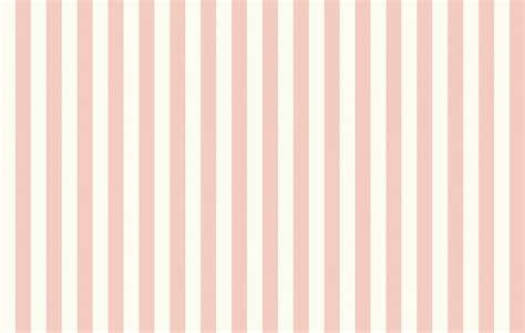 flowers pink  pattern hd wallpaper