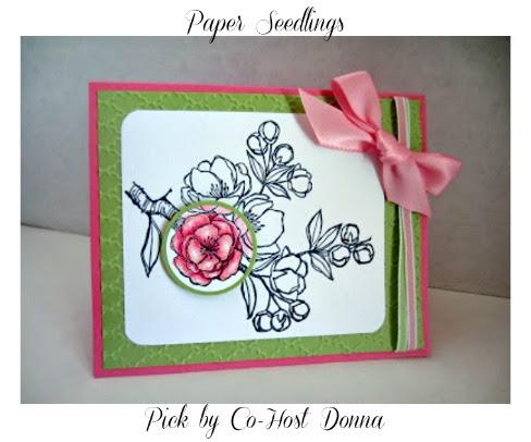 Paper-seedlings-spotlighted-blossom-Donna
