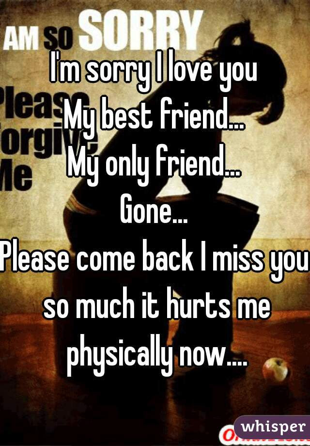 Im Sorry I Love You My Best Friend My Only Friend Gone