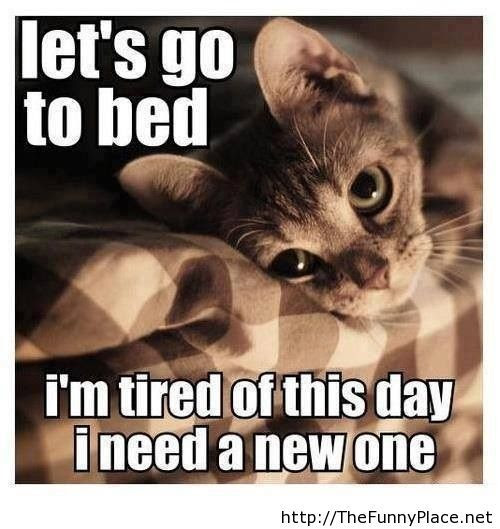 Fun Tired Quotes Thefunnyplace