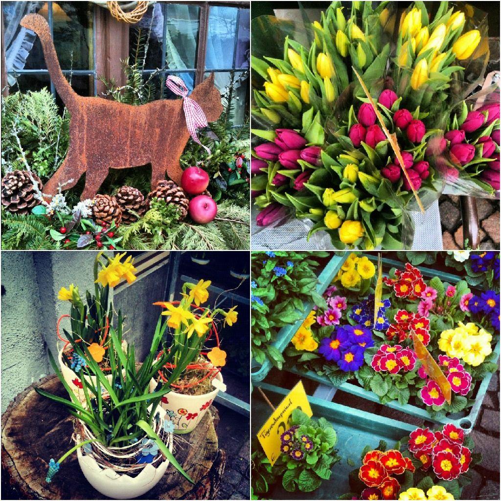 Thursday Feb 21 2013, Some more spring love..