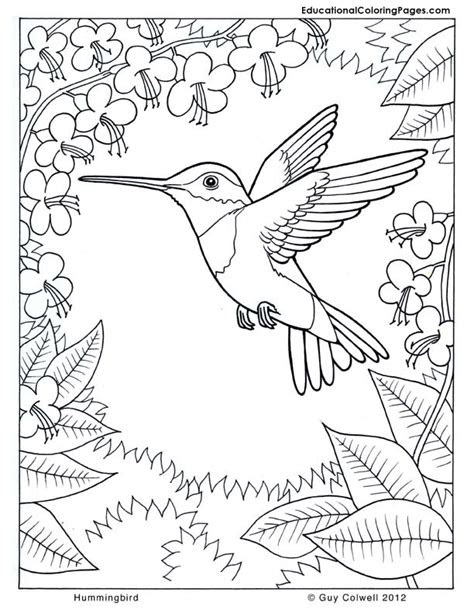nature coloring pages animal coloring pages  kids