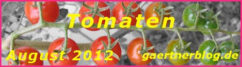 Garten-Koch-Event August 2012: Tomaten [31.08.2012]