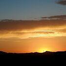 {desert sunset} by Brenda Smith