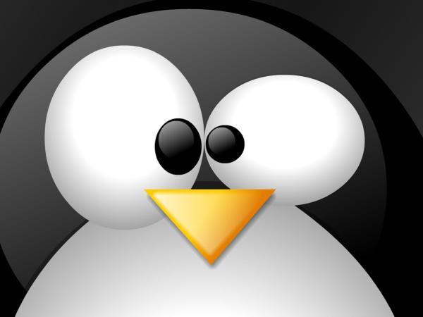 Microsoft deve liberar o pacote Office para o Linux em 2014