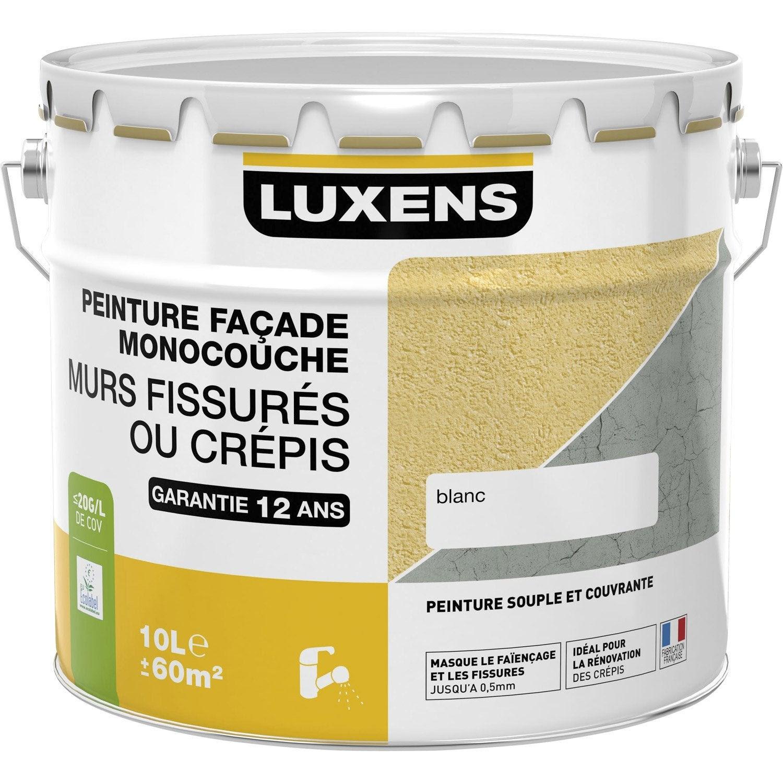 Peinture Façade Murs Fissurés Luxens Blanc 10 L Leroy Merlin