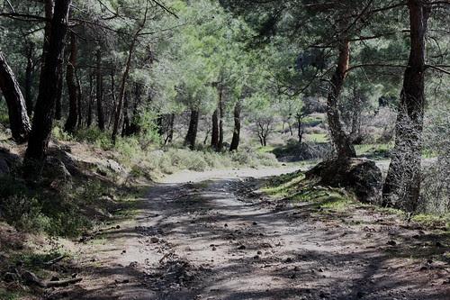 Hiking to Pessa springs