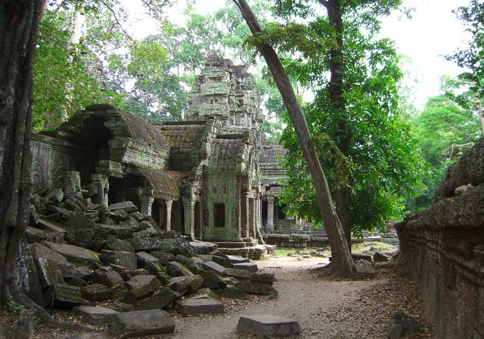 Ancient ruins in the rainforest