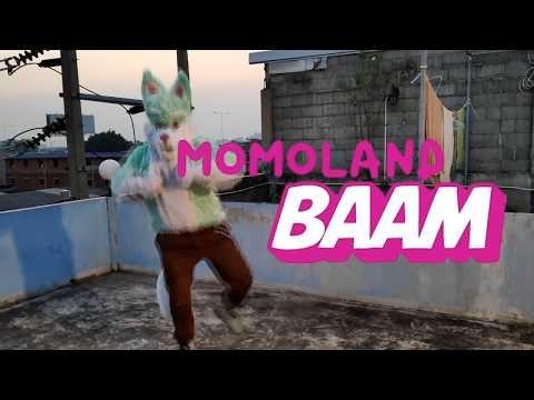 【笹川トシオ】BAAM【Fursuit踊ってみた】- Toshio【年男】