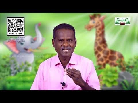 8th Science  தாவரங்கள் மற்றும் விலங்குகளைப்பாதுகாத்தல்  அலகு 22 பகுதி 5  Kalvi TV